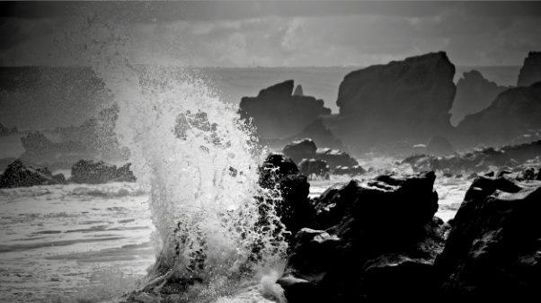 foto-water-rots